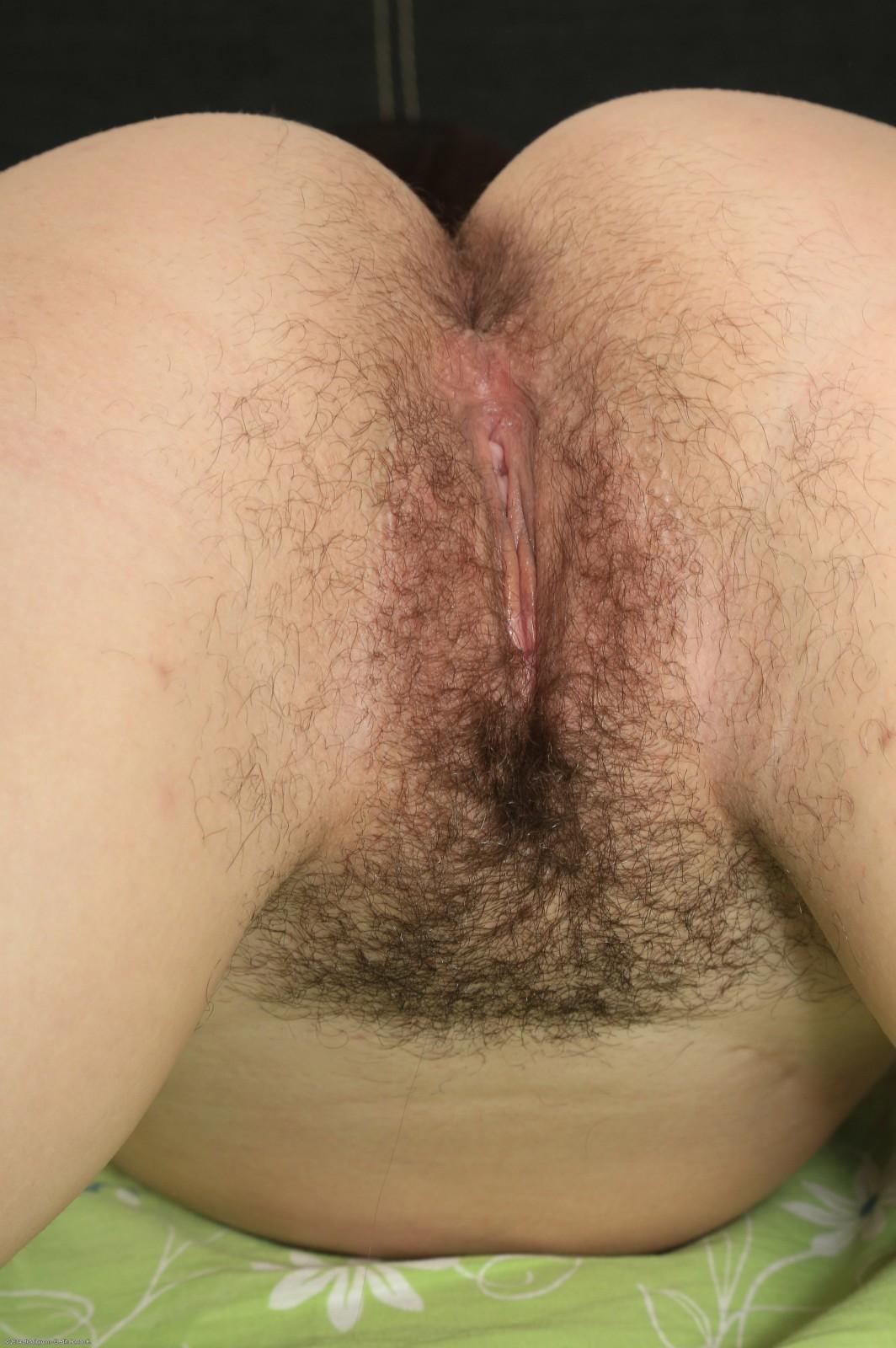 Волосатые гениталии брюнетки